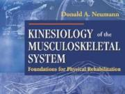 Kinesiology of the Musculoskeletal System Foundations for Physical Rehabilitation by Donald A. Neuma