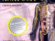 Clinically Oriented Anatomy, Fourth Edition [Paperback]