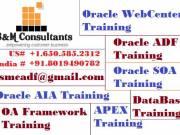 Oracle APEX Training Online at SMC