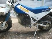 1986 Honda TR 200 Fat cat - $1800 (Palmyra )