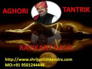 IMMEDIATELY GET SOLUTIONS OF INTER CASTE LOVE MARRIAGE BY  ASTROLOGER RAVIKANT GAUR+91 9501244448