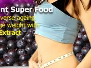 The # 1 Anti - Oxident Super Food
