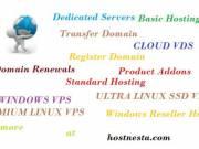 Perfect Money Website Hosting - Bitcoin Web Hosting by hostnesta.com
