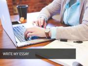 Affordable Custom Essay Writing Services by Cleverwritings