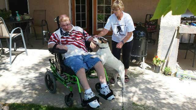 Find Best Ptsd Service Dog Training In Texas Texas City 6851 Old