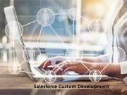 Salesforce Custom Development Services