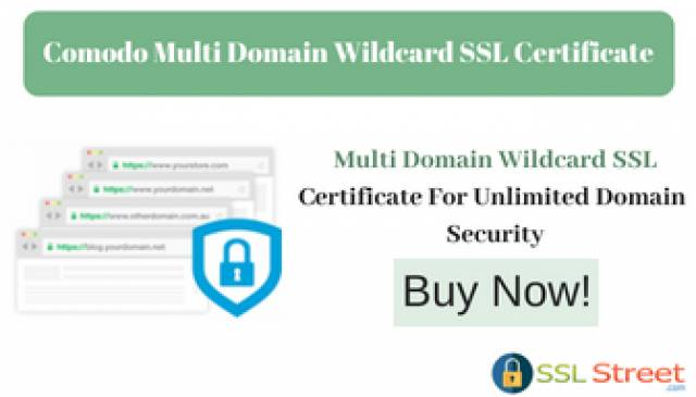 Unlimited Domain Security With Comodo Multi Domain Wildcard SSL ...