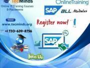 SAP Online Training I USA I TecMinds