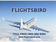 Book Direct Flight from New York (JFK) to Denver (DEN)