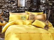 AanyaLinen Attractive Yellow duvet cover- Flat 20% off