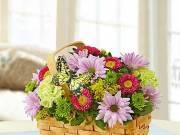 Florist Spencer - House Warming Flowers Jacksonville FL