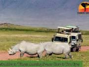 Spectacular Botswana