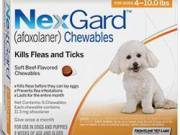 Nexgard Chewables - Nexgard Beef Flavored Treat for Dogs
