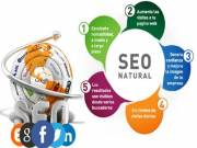 Professional SEO Services in USA | SEO Services Company USA
