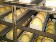 Guinea-Eggs Chukar-Eggs Quail Eggs Quail Eggs – Button, Japanese