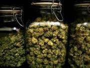 We Buy and sell  Medical marijuana Online