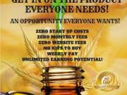 Work From Home! 100% Free Business Opportunity! Start Earning $$$ Now!