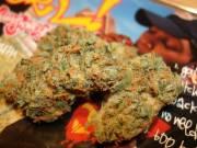 Top shelf buds,kush,cannabis,oils and vapes