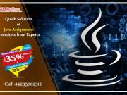 Quick Solution of Java Assignment Questions from Experts