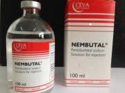Buy/Order Nembutal online