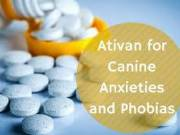 Buy Ativan 1 mg Cash On Delivery