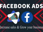 I will setup and manage facebook ads campaign for your business