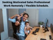 Sales Professionals - Work Remotely with Flexible Schedule