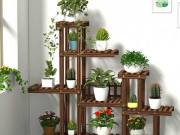 Wood Plant Stand Indoor Outdoor, Wooden Plant Display Multi Tier Flower Shelves Stands