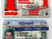 Nevada(NV) Driver License – Nevada(NV) ID