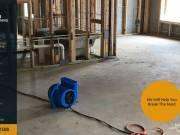 Mold Remediation in Aventura, FL | Sunbird Carpet Cleaning Aventura